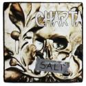 SALT (LP)